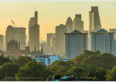 Dawn from Primrose Hill