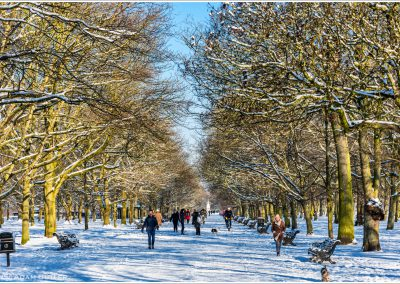 snow, winter, Regent's Park,